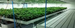 Grow Room Panels Hydroponic Panels Cannabis Panels