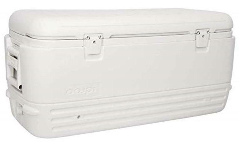Igloo Polar Cooler   Assorted Sizes